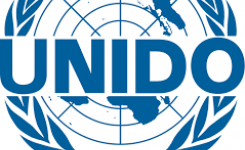 """UNIDO has launched a request for proposals for biomass projects of minimum 1 MW"